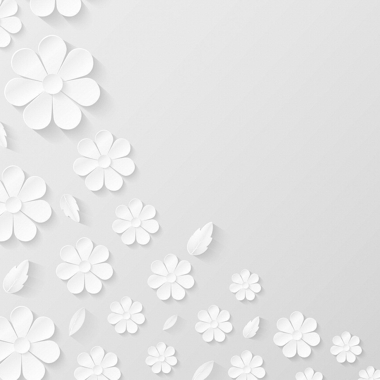 paper flower background, white, flowers