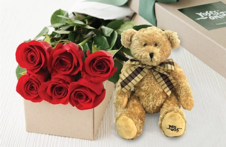 Red Rose With Teddy Rose
