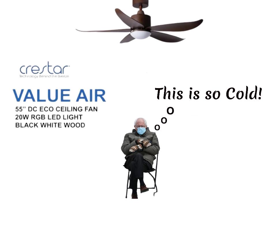 bernie sander under ceiling fan